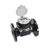 Счетчик холодной воды Aquametro RUBIN MeiStream Plus 150 250_500 94594